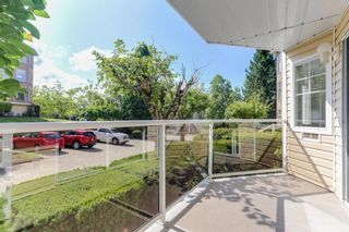 """Photo 20: 126 22611 116 Avenue in Maple Ridge: East Central Condo for sale in """"Rosewood Court Fraserview Village"""" : MLS®# R2388587"""