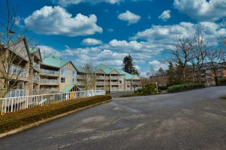 """Photo 15: 402 15150 29A Avenue in Surrey: King George Corridor Condo for sale in """"The Sands II"""" (South Surrey White Rock)  : MLS®# R2523039"""