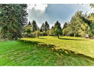Photo 11: 8665 192 Street in Surrey: Port Kells House for sale (North Surrey)  : MLS®# R2002423