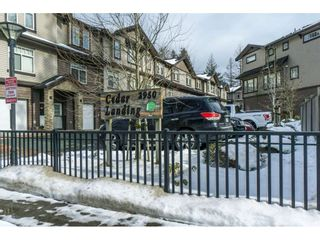 Photo 1: 19 2950 LEFEUVRE ROAD in Abbotsford: Aberdeen Townhouse for sale : MLS®# R2341349