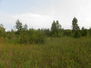 Photo 12: 22084 PT 2 PARCEL, WHITMORE RD in FORT FRANCES: Vacant Land for sale : MLS®# TB212402
