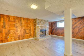 Photo 19: 3738 CEDARILLE Drive SW in Calgary: Cedarbrae Semi Detached for sale : MLS®# A1037615