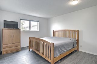 Photo 19: 94 Erin Meadow Close SE in Calgary: Erin Woods Detached for sale : MLS®# A1135362