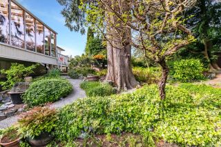 Photo 35: 4903 Bellcrest Pl in : SE Cordova Bay House for sale (Saanich East)  : MLS®# 874488