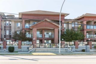 Photo 1: 307 19774 56 Avenue in Langley: Langley City Condo for sale : MLS®# R2437992