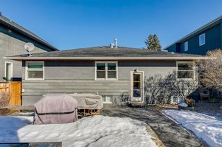 Photo 47: 2423 28 Avenue SW in Calgary: Richmond Detached for sale : MLS®# A1079236