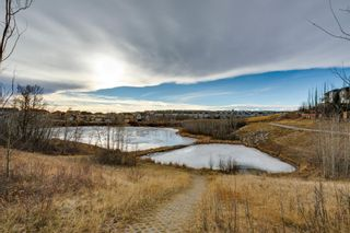 Photo 33: 258 Royal Birkdale Crescent NW in Calgary: Royal Oak Detached for sale : MLS®# A1053937
