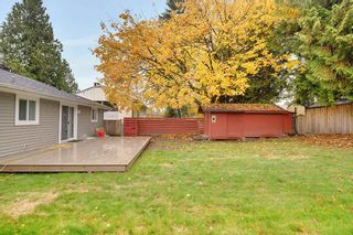 Photo 16: 11266 LOUGHREN DRIVE in Surrey: Bolivar Heights House for sale (North Surrey)  : MLS®# R2223779