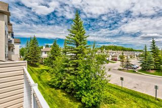 Photo 13: 204 1000 Applevillage Court SE in Calgary: Applewood Park Apartment for sale : MLS®# A1121312