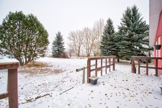 Photo 16: 29342 Range Road 275: Rural Mountain View County Detached for sale : MLS®# A1043659