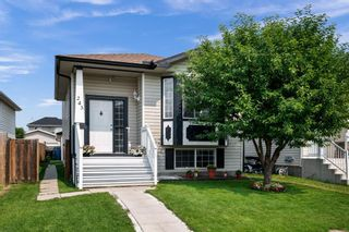 Main Photo: 243 Martinvalley Crescent NE in Calgary: Martindale Detached for sale : MLS®# A1130094