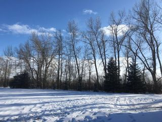 Photo 8: Township 32: Rural Mountain View County Residential Land for sale : MLS®# A1064686