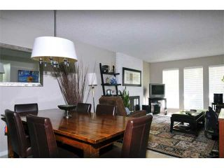 Photo 3: 1245 BLUFF Drive in Coquitlam: River Springs House for sale : MLS®# V975554