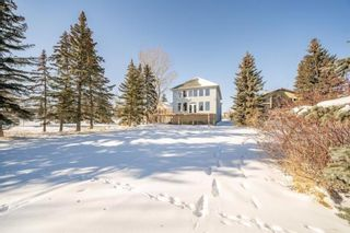 Photo 48: 352 West Chestermere Drive: Chestermere Detached for sale : MLS®# A1038857