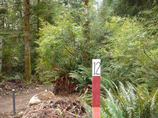 Photo 14: 461 Fir Crest Way in : Isl Quadra Island Land for sale (Islands)  : MLS®# 867147