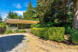 "Photo 13: 12655 26 Avenue in Surrey: Crescent Bch Ocean Pk. House for sale in ""CRESCENT BCH OCEAN PARK"" (South Surrey White Rock)  : MLS®# R2607654"
