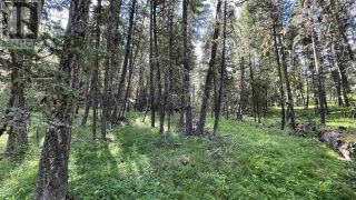 Photo 4: LOT 40 KALLUM DRIVE in 108 Mile Ranch: Vacant Land for sale : MLS®# R2591288