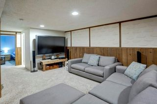 Photo 21: 527 MURPHY Place NE in Calgary: Mayland Heights Detached for sale : MLS®# C4297429