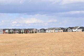 Photo 38: 144 AUBURN MEADOWS Crescent SE in Calgary: Auburn Bay Detached for sale : MLS®# C4236973