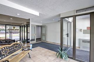 Photo 39: 202 1513 26th Avenue SW 26th Avenue SW in Calgary: South Calgary Apartment for sale : MLS®# A1117931