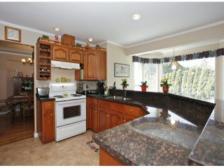 Photo 15: 1615 143B ST in Surrey: Sunnyside Park Surrey House for sale (South Surrey White Rock)  : MLS®# F1406922