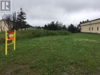 Photo 2: 93 West Street AND 17 Boland Avenue in Stephenville: Vacant Land for sale : MLS®# 1179881