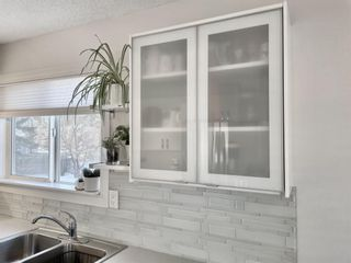 Photo 9: 211 Doverglen Crescent SE in Calgary: Dover Detached for sale : MLS®# A1060305