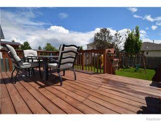 Photo 17: 87 Novara Drive in Winnipeg: West Kildonan / Garden City Residential for sale (North West Winnipeg)  : MLS®# 1618812