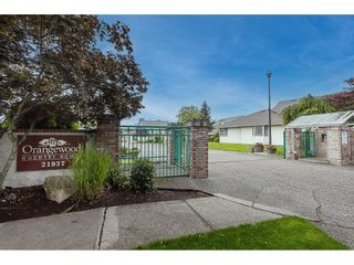 """Photo 1: 703 21937 48 Avenue in Langley: Murrayville Townhouse for sale in """"Orangewood"""" : MLS®# R2593758"""