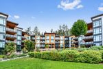 "Main Photo: 510 14855 THRIFT Avenue: White Rock Condo for sale in ""The Royce"" (South Surrey White Rock)  : MLS®# R2530054"