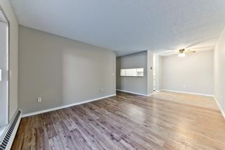 Photo 14: 103 11 Dover Point SE in Calgary: Dover Apartment for sale : MLS®# A1083330