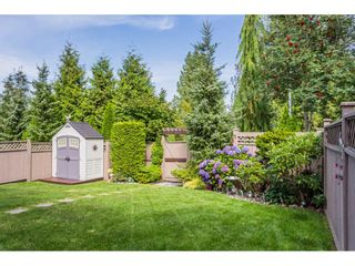 """Photo 19: 7904 211B Street in Langley: Willoughby Heights House for sale in """"Yorkson"""" : MLS®# R2393290"""