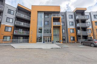 Photo 1: 233 503 ALBANY Way in Edmonton: Zone 27 Condo for sale : MLS®# E4240556