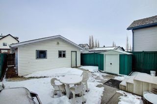 Photo 30: 204 Mt Aberdeen Circle SE in Calgary: McKenzie Lake Detached for sale : MLS®# A1063368