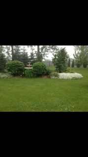 Photo 38: 4478 County Rd 45 in Hamilton Township: House for sale : MLS®# 511050344