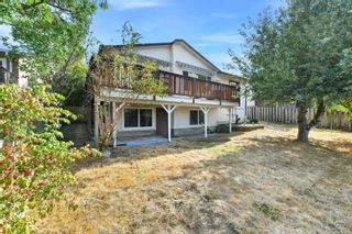 Photo 36: 4034 Elise Pl in : SE Lake Hill House for sale (Saanich East)  : MLS®# 886161