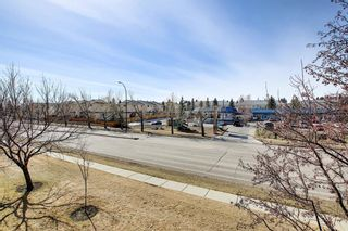 Photo 31: 1308 1308 Millrise Point SW in Calgary: Millrise Apartment for sale : MLS®# A1089806