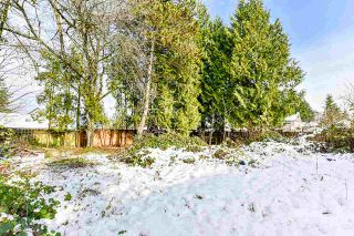 Photo 29: 21759 117 Avenue in Maple Ridge: West Central House for sale : MLS®# R2525084