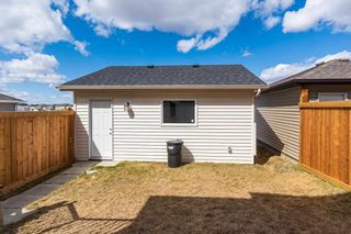 Photo 32:  in Edmonton: Zone 55 House for sale : MLS®# E4241733