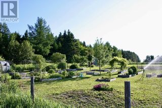 Photo 21: 799 Back Greenfield Road in Summerfield: Agriculture for sale : MLS®# NB060241