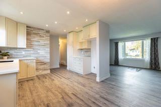 Photo 15: 8723 164 Street in Edmonton: Zone 22 House for sale : MLS®# E4263383