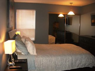 """Photo 6: 203 340 NINTH Street in New Westminster: Uptown NW Condo for sale in """"PARK WESTMINSTER"""" : MLS®# V1047319"""