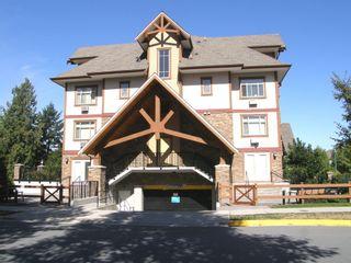 Photo 8: 404 12525 190A Street in CEDAR DOWNS: Home for sale : MLS®# R2200904