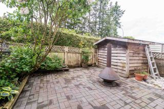"""Photo 25: 184 2844 273 Street in Langley: Aldergrove Langley Townhouse for sale in """"CHELSEA COURT"""" : MLS®# R2584478"""