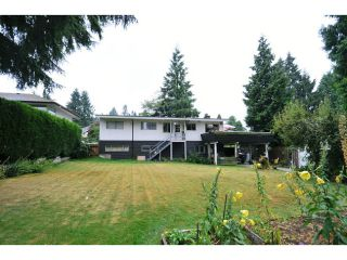 Photo 12: 817 COTTONWOOD Avenue in Coquitlam: Coquitlam West House for sale : MLS®# V1020762