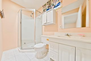 Photo 26: 50 Martindale Mews NE in Calgary: Martindale Detached for sale : MLS®# A1114466