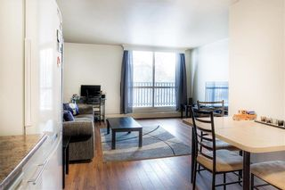 Photo 8: 204 175 Pulberry Street in Winnipeg: Pulberry Condominium for sale (2C)  : MLS®# 202102272