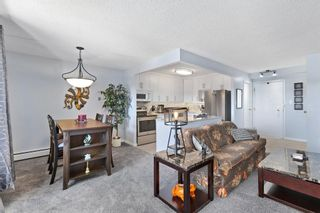 Photo 16:  in Calgary: Beltline Apartment for sale : MLS®# A1073910