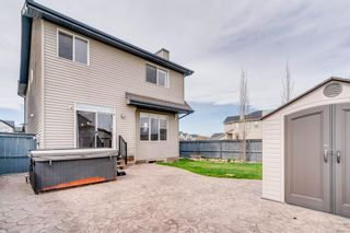 Photo 41: 1571 COPPERFIELD Boulevard SE in Calgary: Copperfield Detached for sale : MLS®# A1107569