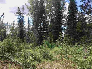 Photo 8: LOT 10 ISLAND PARK Drive in Prince George: Miworth Land for sale (PG Rural West (Zone 77))  : MLS®# R2388123